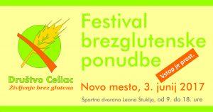 Festival FB 2017